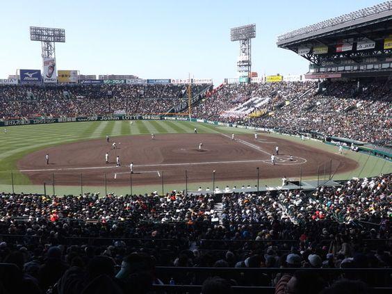動画で見る!プロ野球現役選手の甲子園個人記録は意外と多い!のサムネイル画像