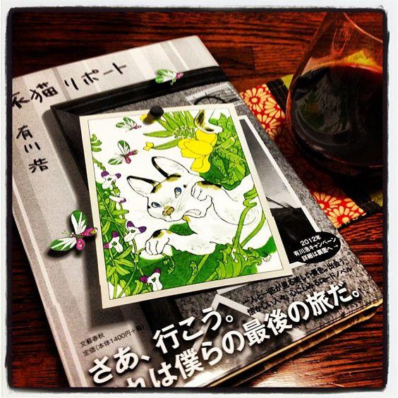 福士蒼汰主演、猫と旅する人気小説『旅猫リポート』実写映画化!のサムネイル画像