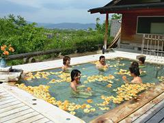 長野県で温泉も楽しめる人気宿泊宿ランキングベスト5をご紹介しますのサムネイル画像