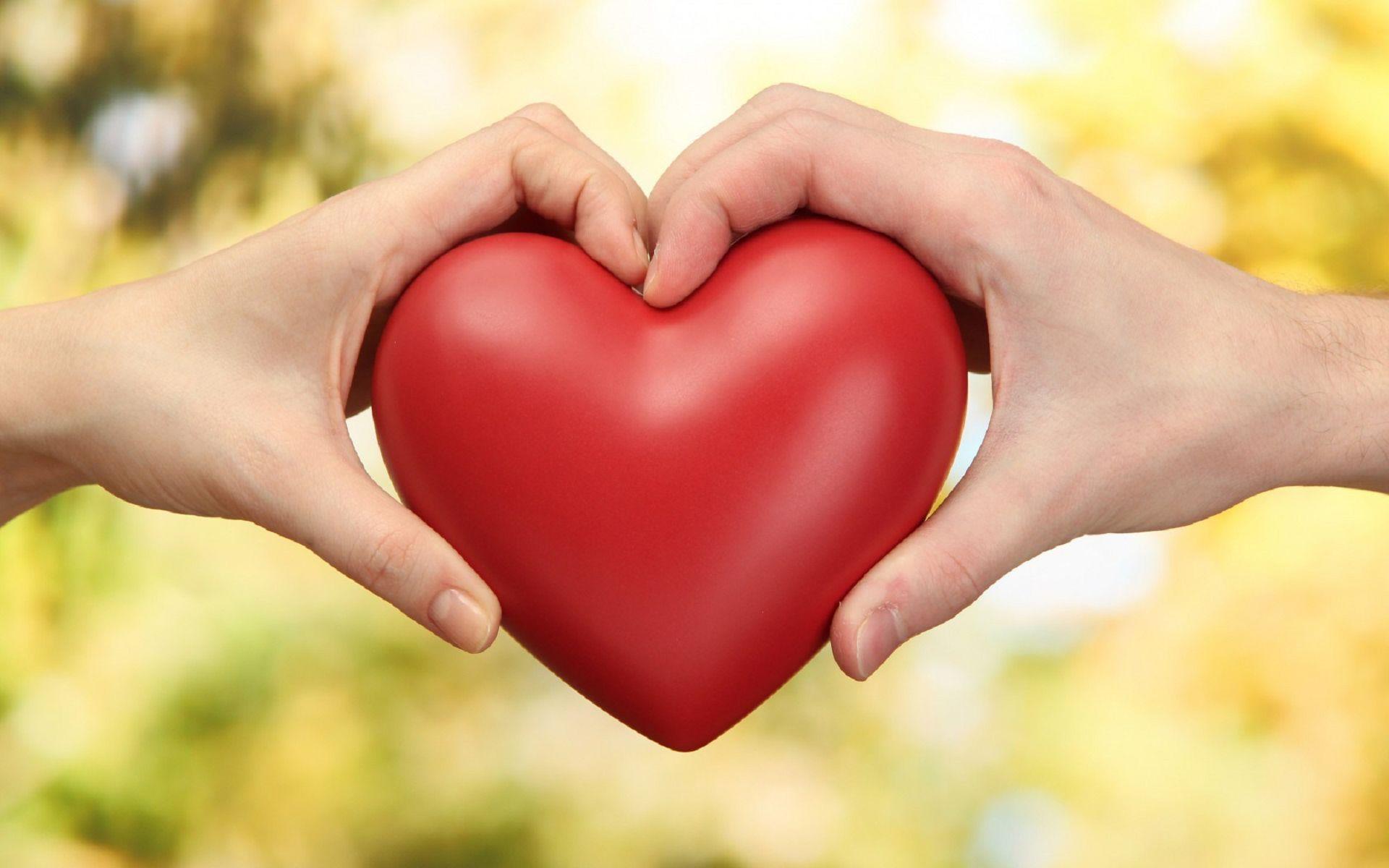 あなたはどのドラマが好き?高視聴率の恋愛ドラマランキングとはのサムネイル画像