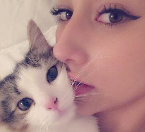 """猫が大好き!ダレノガレ明美の""""かわいい猫と暮らす生活""""をご紹介◎のサムネイル画像"""