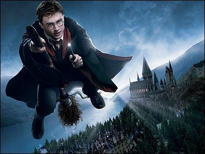 『ハリーポッター』シリーズ『不死鳥の騎士団』の持つ重要な役割とはのサムネイル画像