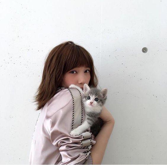 本田翼さんが猫ちゃんと共演、その可愛さが話題になっています。のサムネイル画像