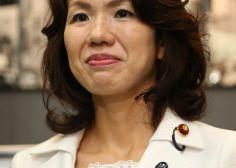 豊田真由子の子供が学校でいじめ?夫とは虐待が原因で別居の噂!のサムネイル画像