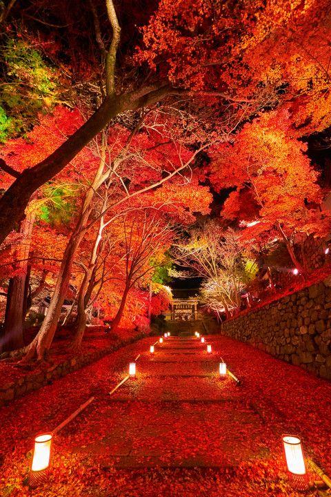 京都の住んではいけない場所って?今も続く部落差別がやばい!のサムネイル画像