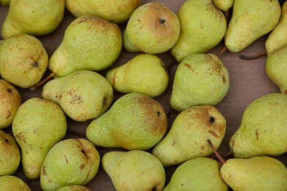 苦悩の梨の使い方は?現代でも販売されている拷問器具を解説!のサムネイル画像
