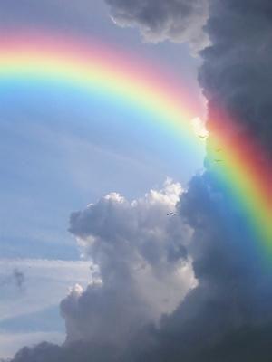 幸福の科学の信者は?幸福の科学に入信している芸能人一覧!のサムネイル画像