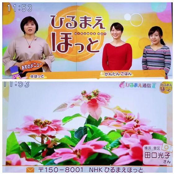 話が上手い武内陶子さんの経歴は?気になる旦那との馴れ初めや子供についても!のサムネイル画像