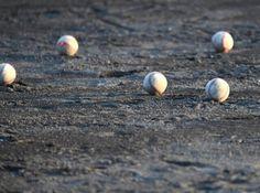 プロ野球名物球審・白井一行とは?怪鳥と呼ばれる⁉のサムネイル画像