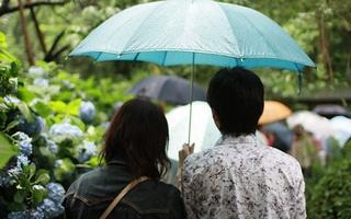 【東京編】雨の日も楽しめるおすすめデートスポットをご紹介☆のサムネイル画像