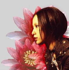 【映画】中島美嘉が演じたnanaを画像で振り返る!【動画あり】のサムネイル画像