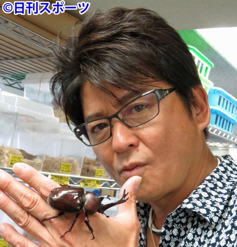 ギネス記録!自宅に5000匹!哀川翔のカブトムシ伝説まとめ!のサムネイル画像