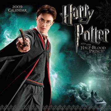 ハリーポッターの主要キャラクターのの本後吹き替え版の声優さんは?のサムネイル画像