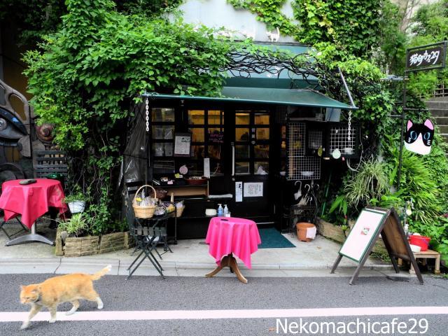 ロケで撮影に使われたー人情味溢れるー浅草のカフェを紹介!のサムネイル画像