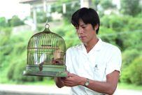 恋の逃避行を描いた名作!ドラマ『青い鳥』を振り返りましょう!の画像